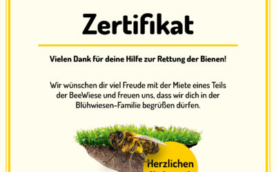 Wir retten die Bienen